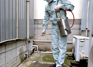 B&G エクステンダーバン [噴霧器、噴霧機、殺虫剤、農薬、消臭剤]