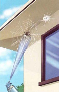 クモの巣消滅ジェット 使用方法 [害虫駆除、退治、対策、クモ(蜘蛛)、クモの巣]